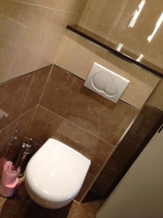 Hotel Bellevue: shower room