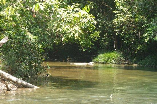 Labis, Malaysia: Blue Lake