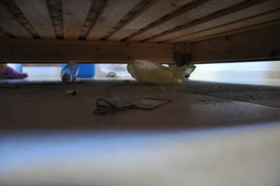 Aviv Spring Hostel : mud under the bed (not our staff)