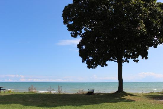 Brighton, Canada: High Bluff campground