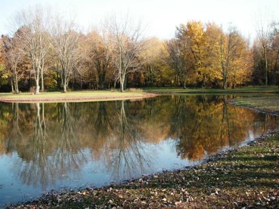 Michigan City Campground: Fishing Pond