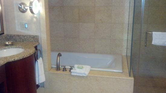 Ameristar Casino Resort Spa St. Charles: Bathroom - tub