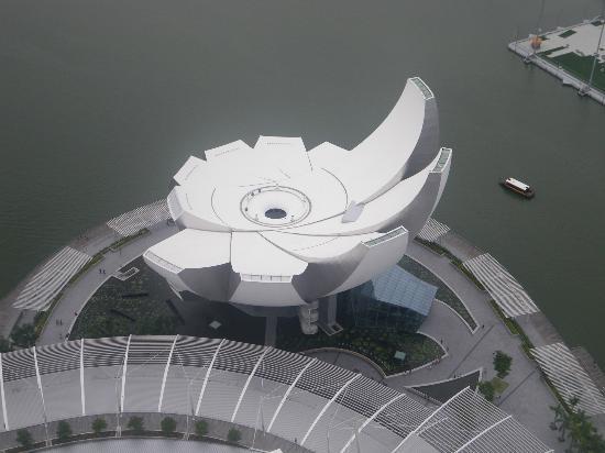 Marina Bay: The ArtScience Museum