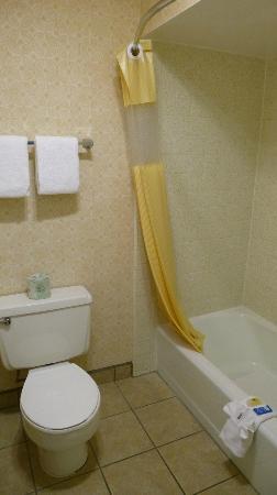 Vagabond Inn Bishop: Badezimmer