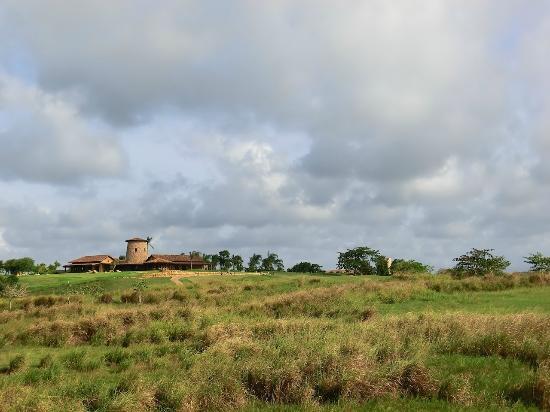 Royal Isabela: La Casa Principal