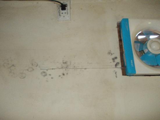 Samsenthai Hotel: mouldy wall