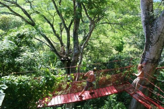 The Treehouse: Suspension bridge at the Poste Rojo