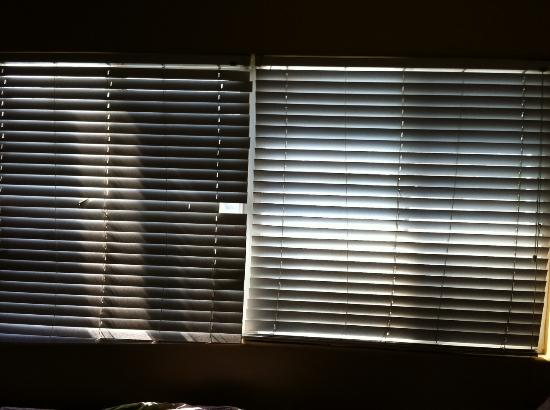 Shores Inn & Suites: Blinds missing, no privacy.