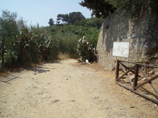 Torre Cepollini : Roman road walk to Alasso