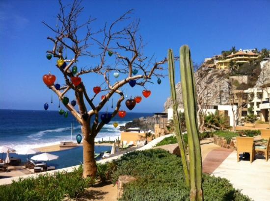 The Resort at Pedregal: Beautiful vistas!