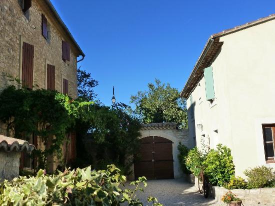 Une Treille en Provence: la cour et l'entrée