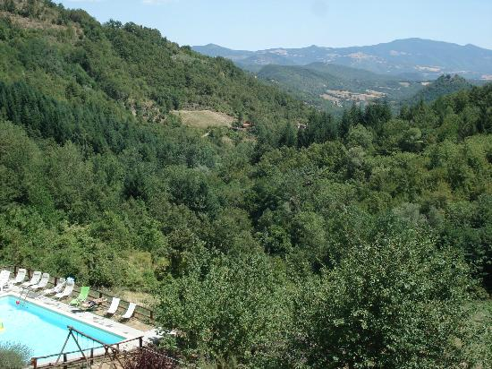Bio Agriturismo Il Vigno: Vista de la piscina desde la habitación.