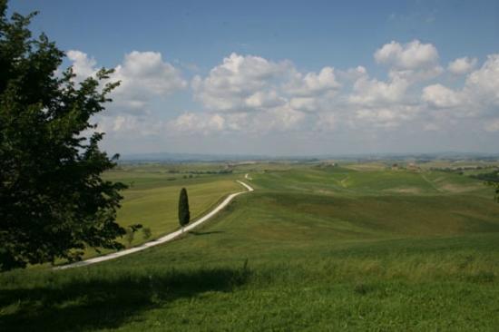 Wandering Around Tuscany : Crete Senesi