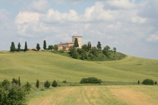 Wandering Around Tuscany : Cantine