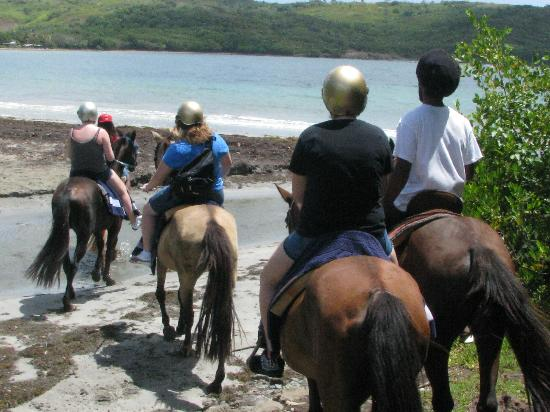 Holiday Riding Stable: Reaching the beach