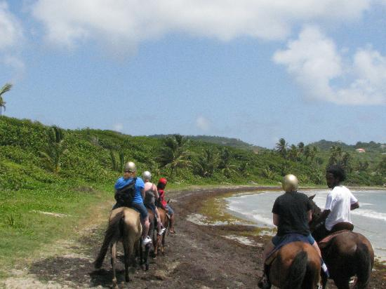 Holiday Riding Stable: Riding along the beach