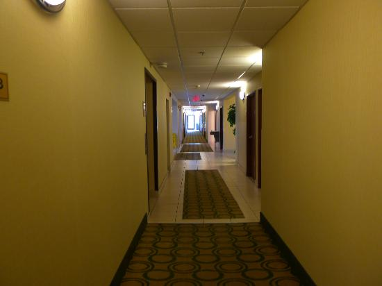 Comfort Inn Whitehall: First floor hallway