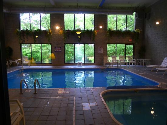 Comfort Inn Whitehall: Pool