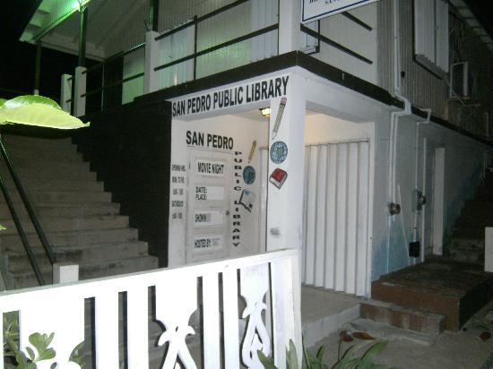 Banyan Bay Suites: Library