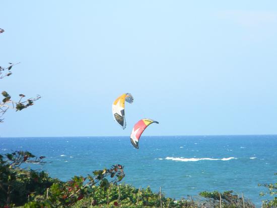 Cabarete East Beachfront Resort: kite surfers