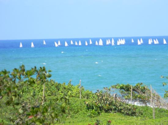 Cabarete East Beachfront Resort: sailboats