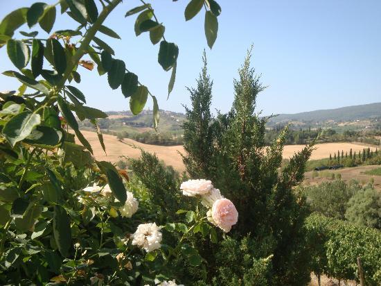 Tenuta Mormoraia: San Gimignano from a distance