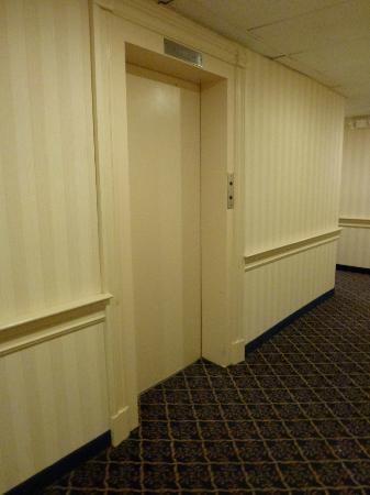 Amsterdam Hotel : Hallway Elevator