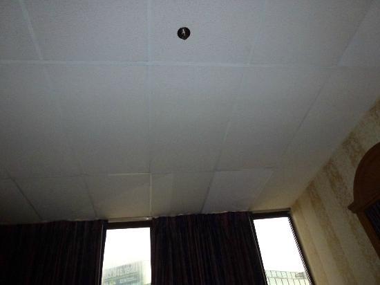 Amsterdam Hotel: Ceiling