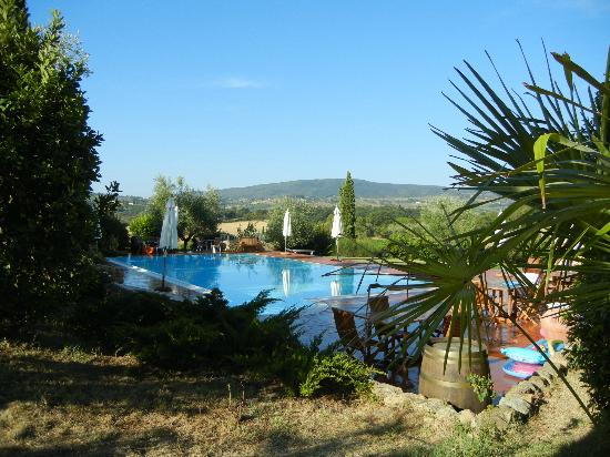 Tenuta Mormoraia : Another view of the pool