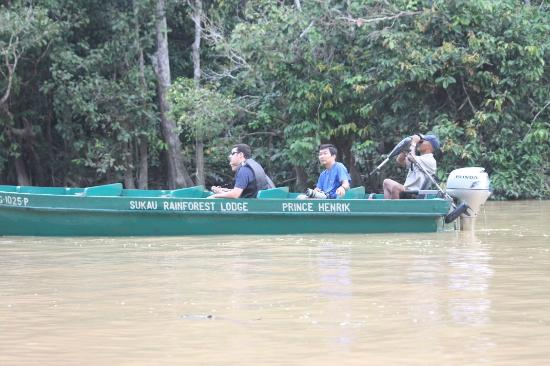 Nature Lodge Kinabatangan: Boat trip