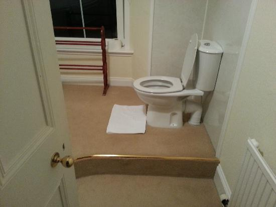 Kilmichael House B&B : Toilet