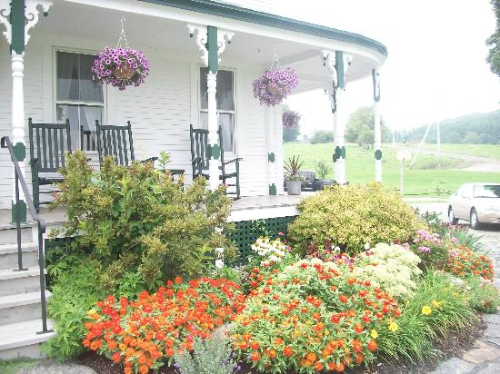 Emergo Farm: Lori's beautiful gardens