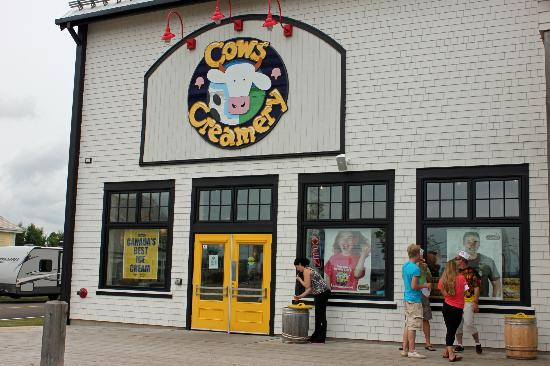 COWS Creamery Tours: This is the place!