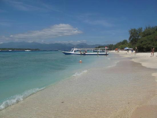 Danima Resort & Restaurant: Beach and view of Lombok, right in front of Danima