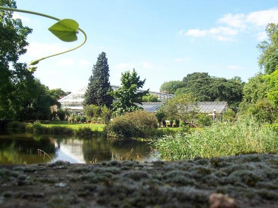 Flora: Plant Houses