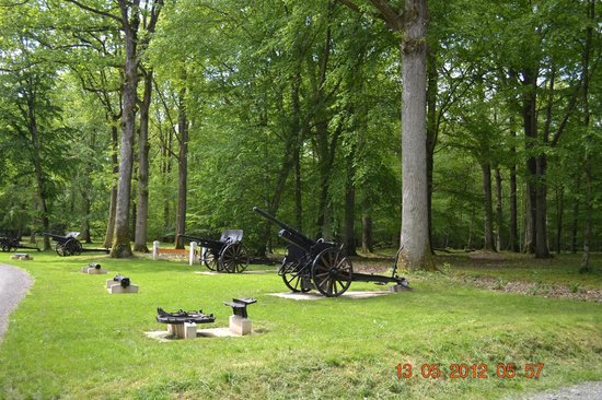 Chateau-Thierry, France: Belleau Wood WWI Armaments