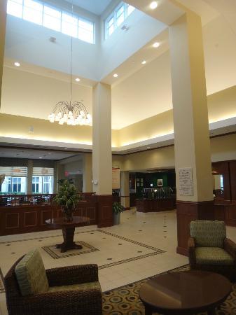 hilton garden inn miami airport west hotel lobby - Hilton Garden Inn Miami Airport West