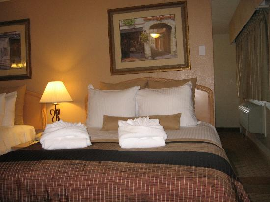 Twin Peaks Lodge & Hot Springs: Bed with many pillows