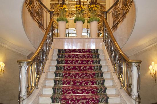 Grand Hotel Wien: Staircase