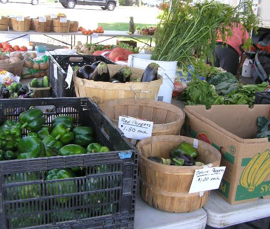 The Convent: Angels Nest Bed & Breakfast: Farm grown veggies at Friday farmers market