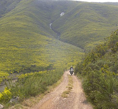 Dualsport Adventures and Rentals - Day Tours