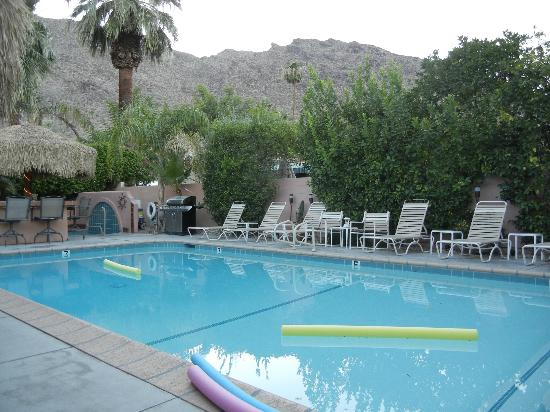 The Coyote Inn: The pool with a mountain view and cascading grapefruit branches with fruit