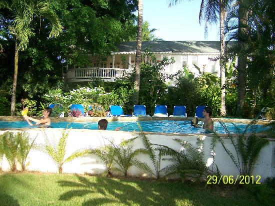 Cabarete Surfcamp: piscina