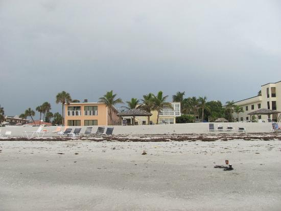Coquina On The Beach : View from the beach