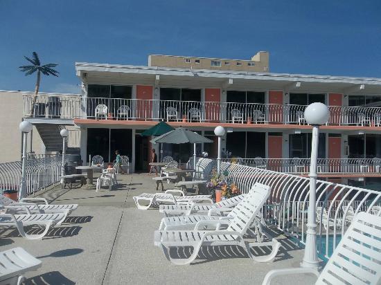 Sahara Motel: This is the sun deck