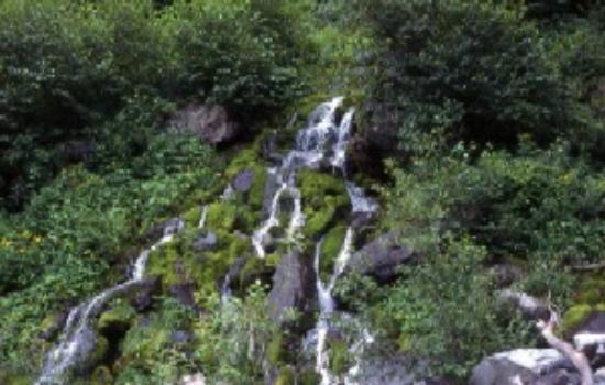 Mt. Kitadake: 二俣手前の水場