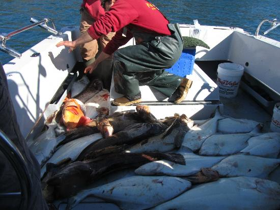 Ling cod picture of the fish house fishing charters for Fishing charters seward ak