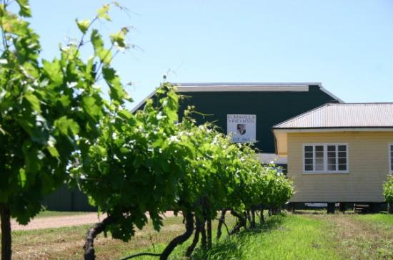 Romavilla Winery Photo