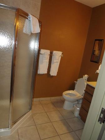 BlueGreen Odyssey Dells: Only actual bathroom.