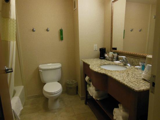 Hampton Inn & Suites Pocatello: bathroom